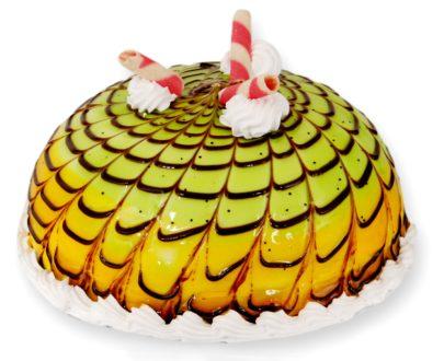 Mango Kiwi Cake
