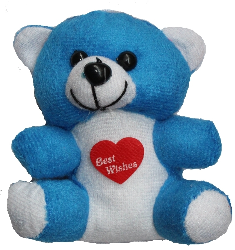 Small 4 Inch Teddy Bear in Pune Designs, Images, Price